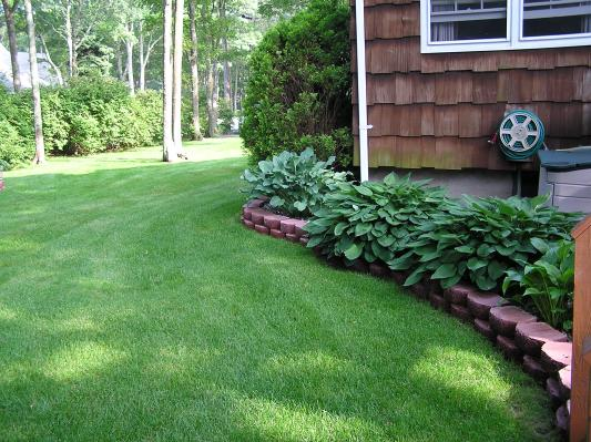 For Trugreen Complaints About Growing Grass In Shaded Areas Are Easily Resolved